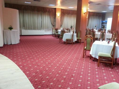 Restaurant Paradis - Bragadiru (mocheta si plinta)