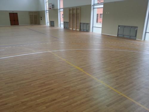 Sala Sport Scoala 156 (sapa autonivelanta, covor PVC si marcaje indoor)
